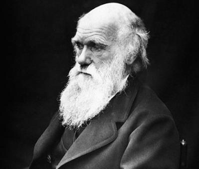Charles Darwin en 1869, par J. Cameron.